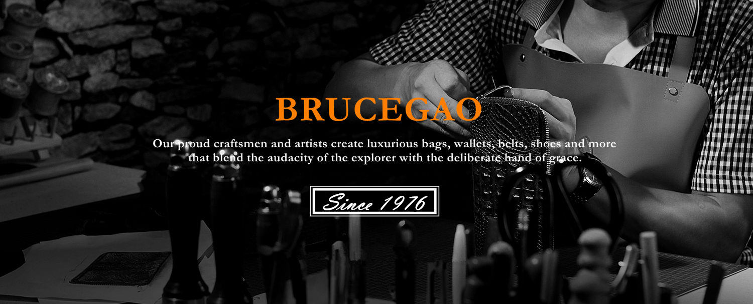 BRUCEGAO's Luxury Bags