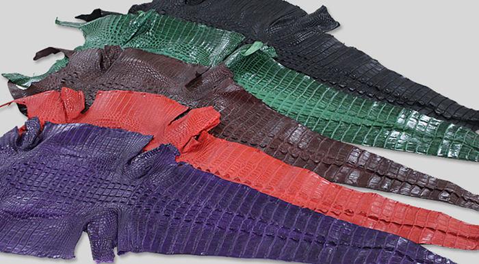 Alligator Skin for Bag