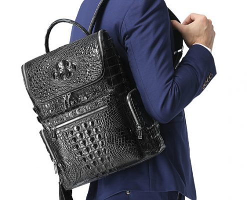 BRUCEGAO's Crocodile Backpack for Men
