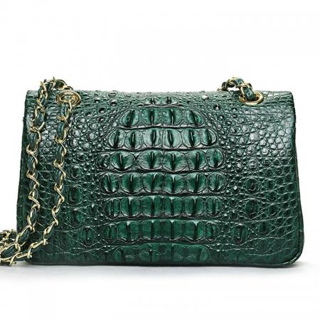 Stylish Evening Crocodile Purse, Crocodile Shoulder Bag-Green-Back