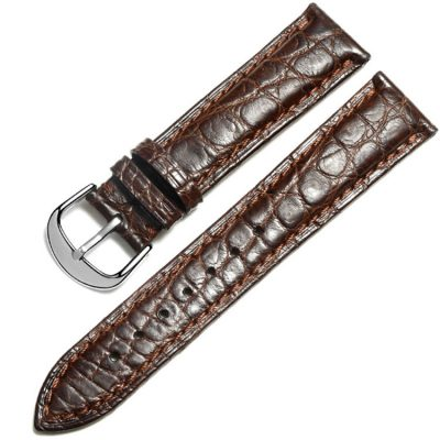 Brown Crocodile & Alligator Skin Apple Watch Band with Silver Adapter