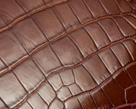 Alligator Business Bag, Alligator Leather Briefcase - Alligator Skin
