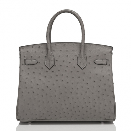 Classic Padlock Genuine Ostrich Skin Top Handle Handbags-Gray-Back