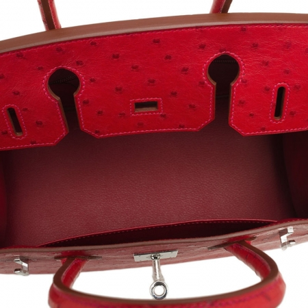 Classic Padlock Genuine Ostrich Skin Top Handle Handbags-Red-Inside