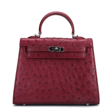 Designer Padlock Ostrich Leather Satchel Purse Crossbody Bag Handbag-Claret