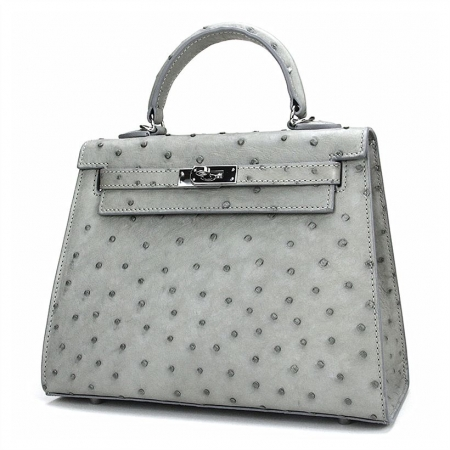 Designer Padlock Ostrich Leather Satchel Purse Crossbody Bag Handbag-Gray-Front