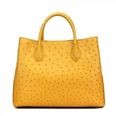 Ostrich Handbags Shoulder Bags Tote Purses – Yellow