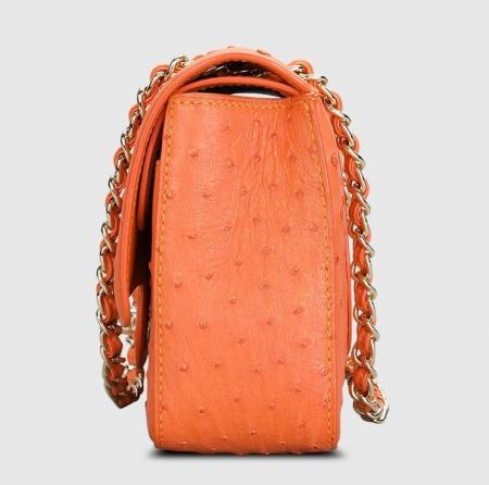 Stylish Ostrich Leather Purse Crossbody Shoulder Bag-Side