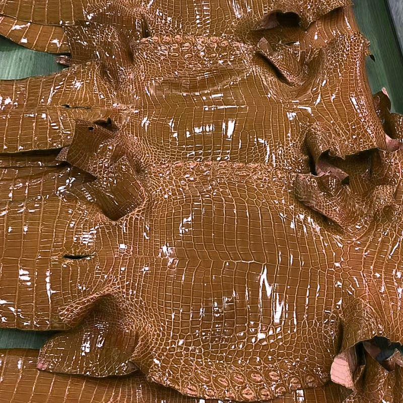 Brown Crocodile Skin