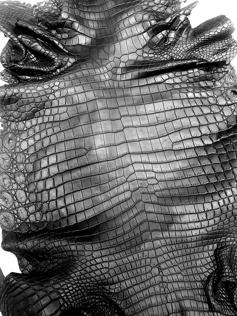 crocodile skin for jacket