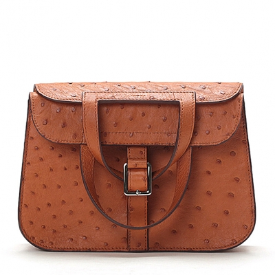 Designer Ostrich Skin Handbag Shoulder Bag for Women