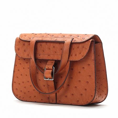 Designer Ostrich Skin Handbag Shoulder Bag for Women-Micro Side