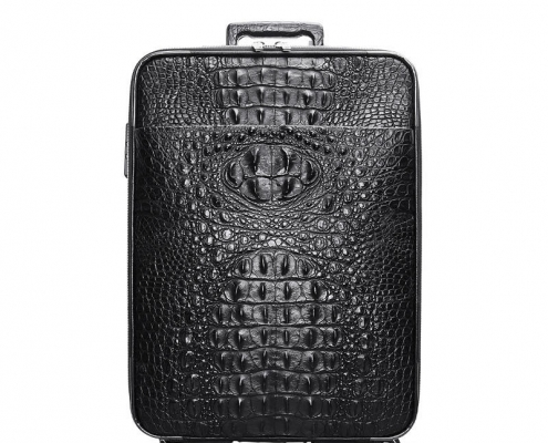 Crocodile Luggage with Spinner Wheels